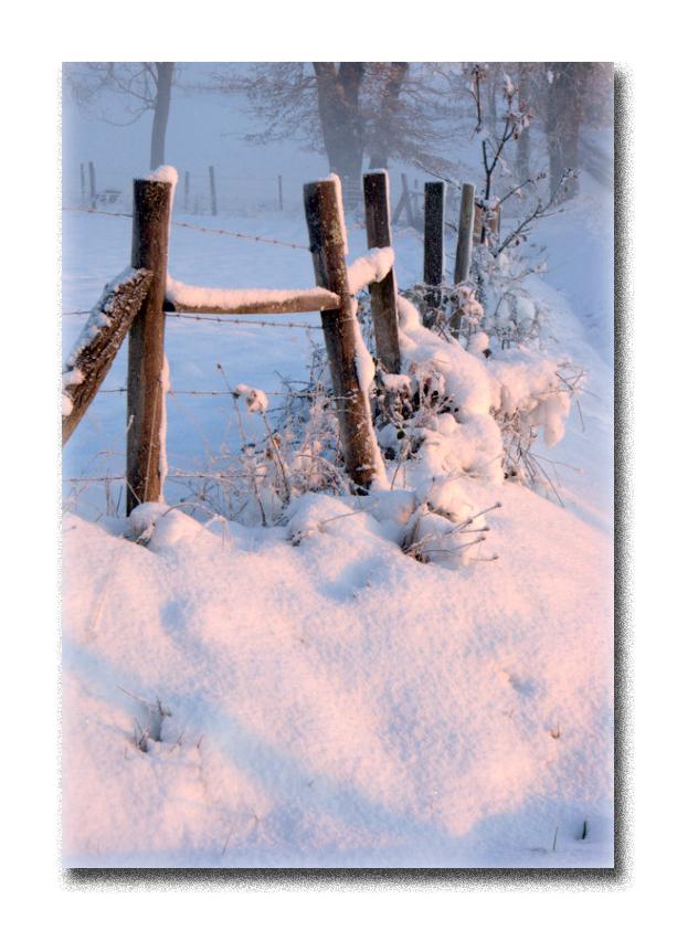 hiver2016-2.jpg
