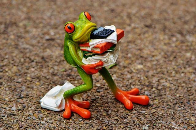 grenouille stressee.jpg