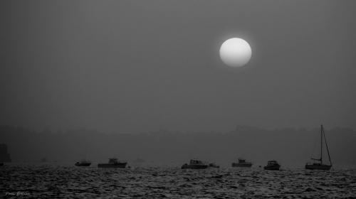 Phil Baron  mot de lune.jpg