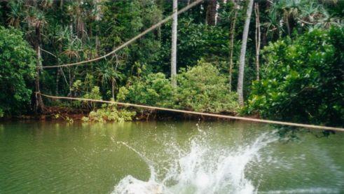 Amazone89.jpg