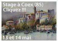 Stage à Coex en Vendée