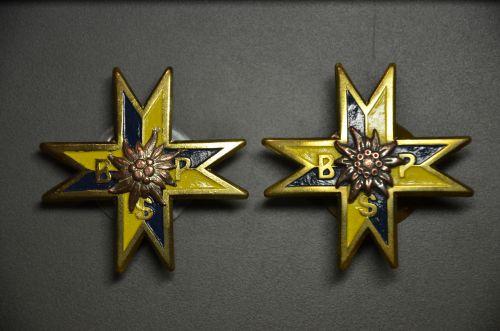 Insignes de poitrine du bataillon de chasseurs de Podhale