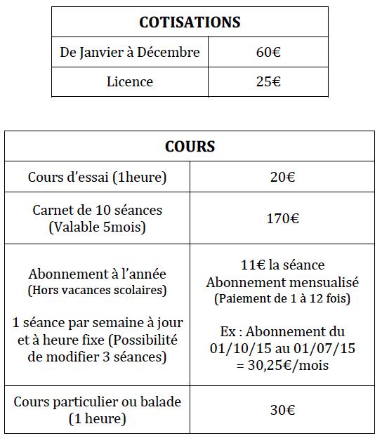 tarif cours poneys.png