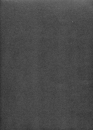 galuchat noir.jpg