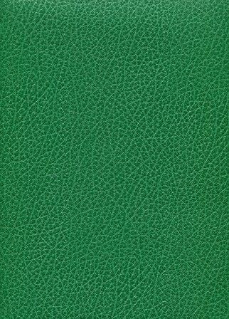 skivertex buffle vert bouteille.jpg