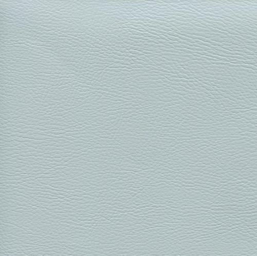 chevreau bleu ciel clair.jpg