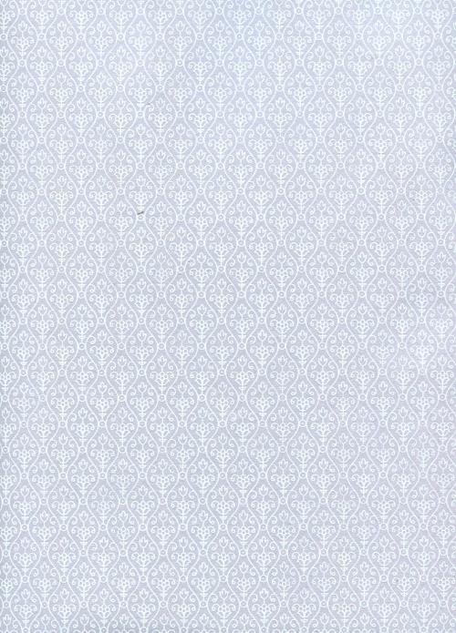 lola gris.jpg
