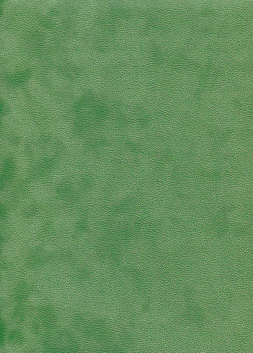 simili soft vert l'art et création.jpg