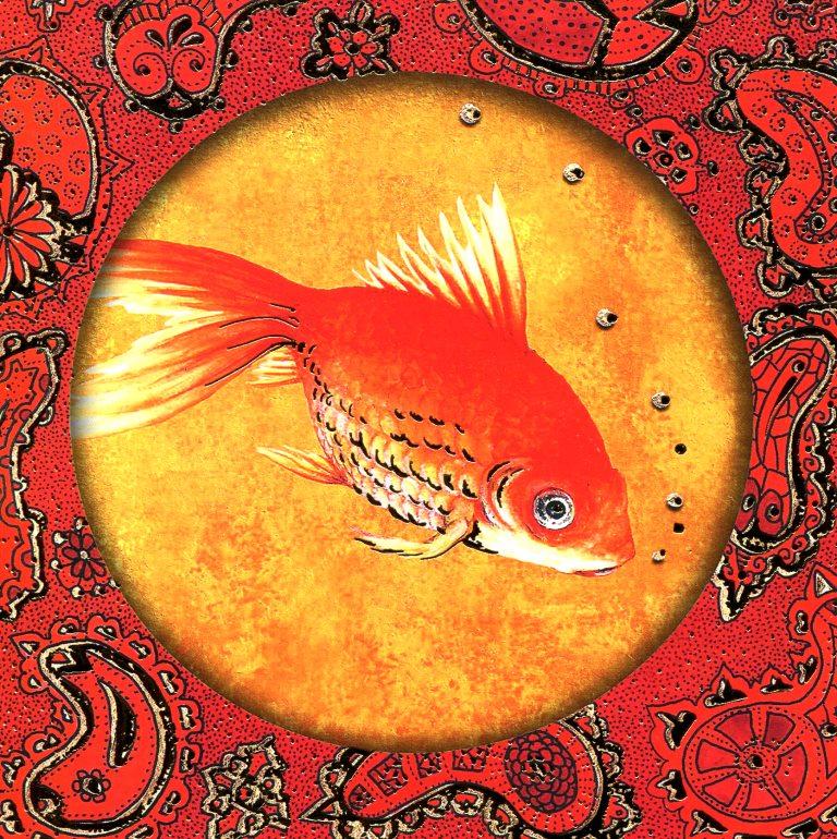 poisson rouge - 26.jpg