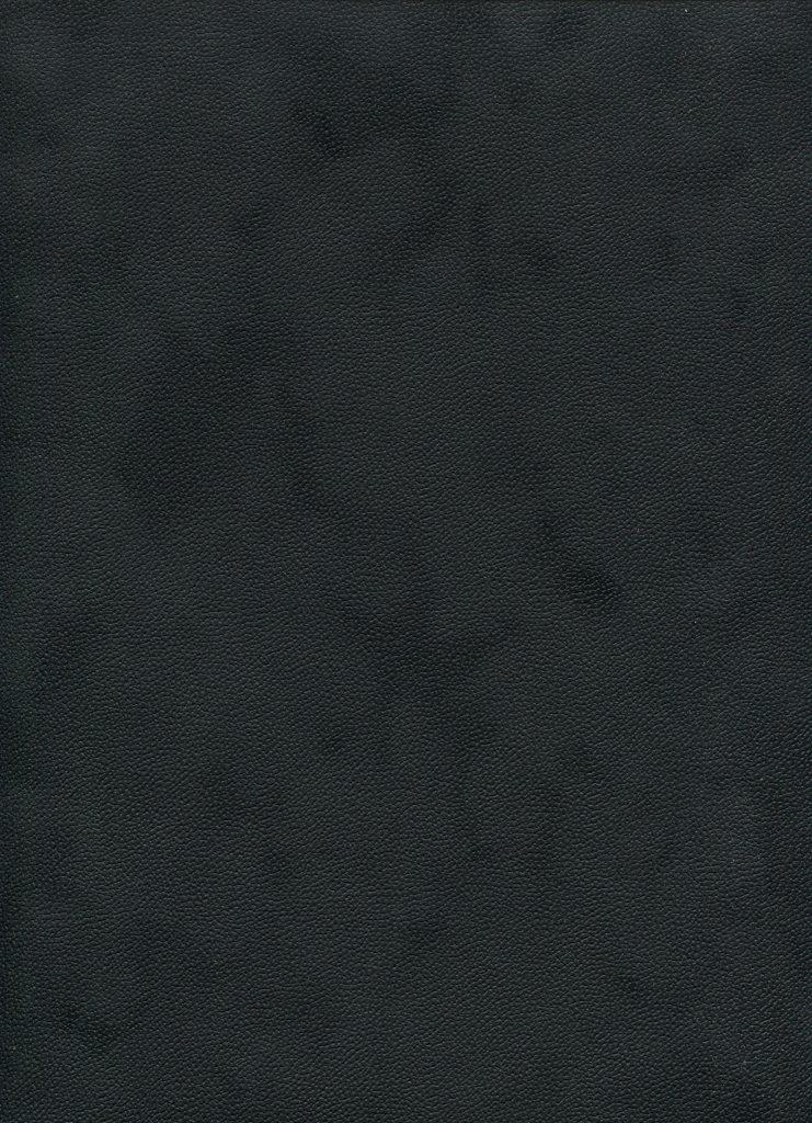 soft noir.jpg