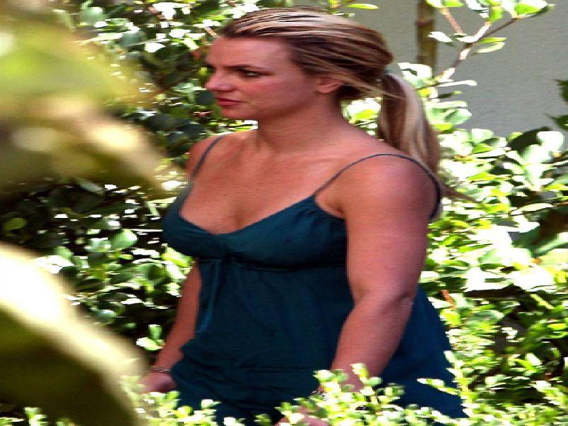 La Belle Chatte De Britney Spears