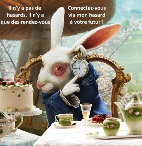 le lapin d'alice_hasard3.jpg
