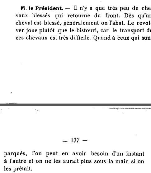 1915chevauxdeguerre2.JPG