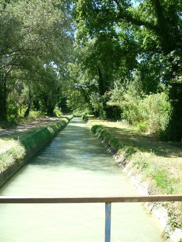 canal_de_carpentras_2016 (55).JPG