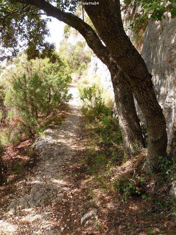 Chemin pour aller au sommet de la croix à St Gens