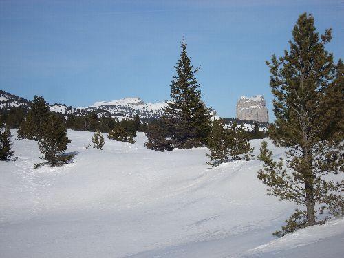 Au fond le Mont Aiguille, avec le soleil SVP !!!