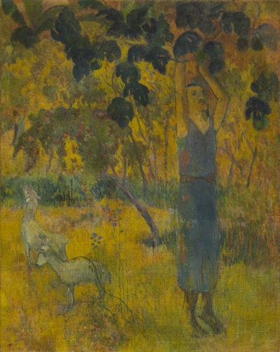 Paul-Gauguin-L'homme cueillant des fruits 1897 -o-399x500.jpg