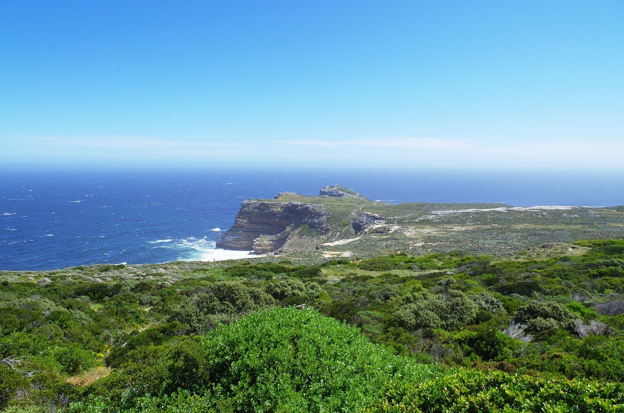 Table-Mountain-Reserve-South-Africa-Cape-Point-2227792.jpg