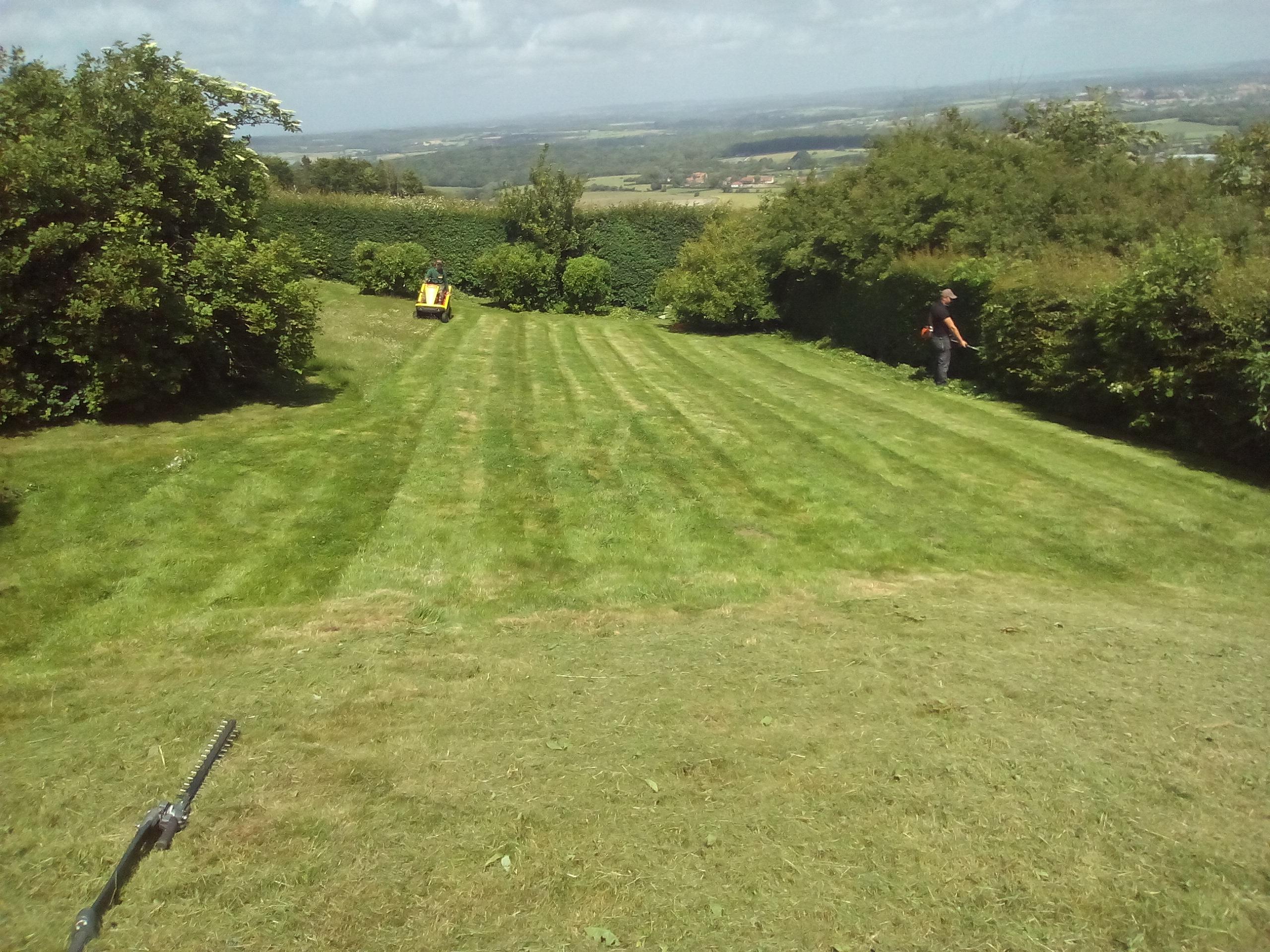 Entretien de jardins en cheque emploi service for Entretien jardin quimper cesu