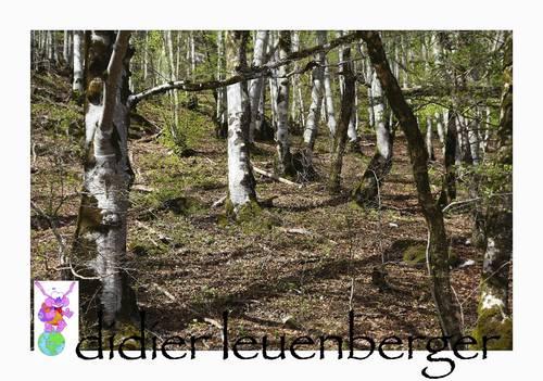 SUISSE JAUN D 5 AVRIL 2012 237.jpg