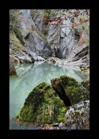 SUISSE Gorges Broc 20 oc 2008 024 (2).JPG