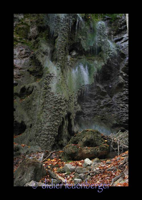 SUISSE Gorges Broc 20 oc 2008 140.jpg