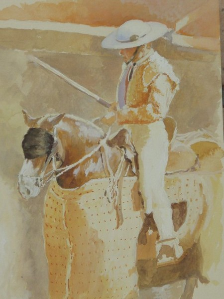 caballo de picador.jpg