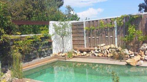 vue piscine 3 juin 14.jpg