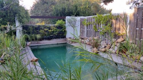 Perspective bassin de nage 1er aout 15.jpg