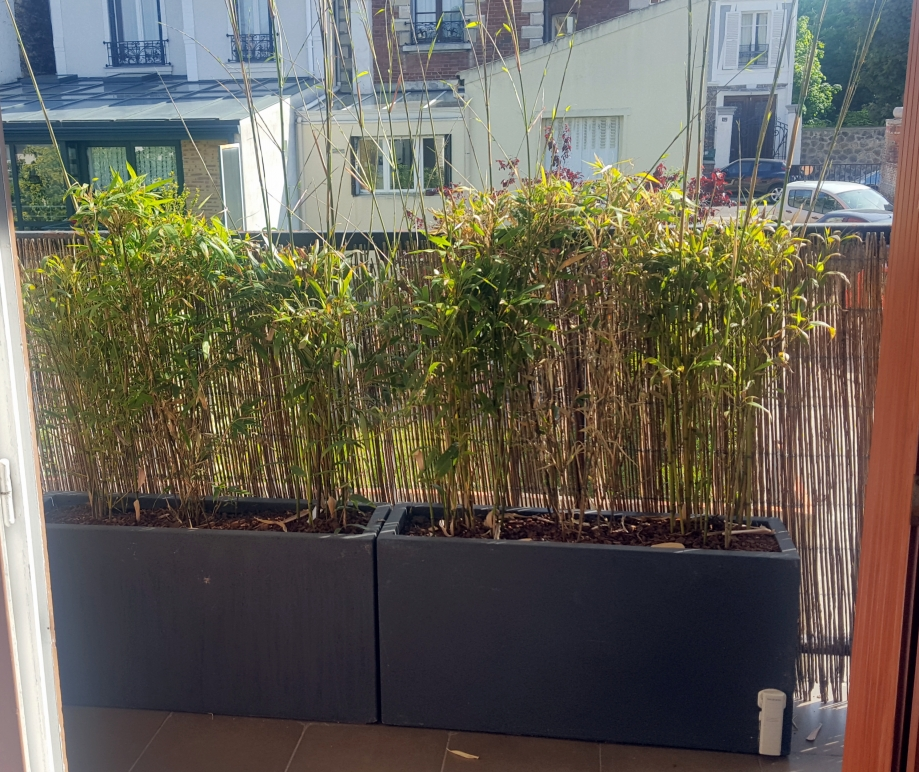 Jardinière blacon 10 mai 17.jpg