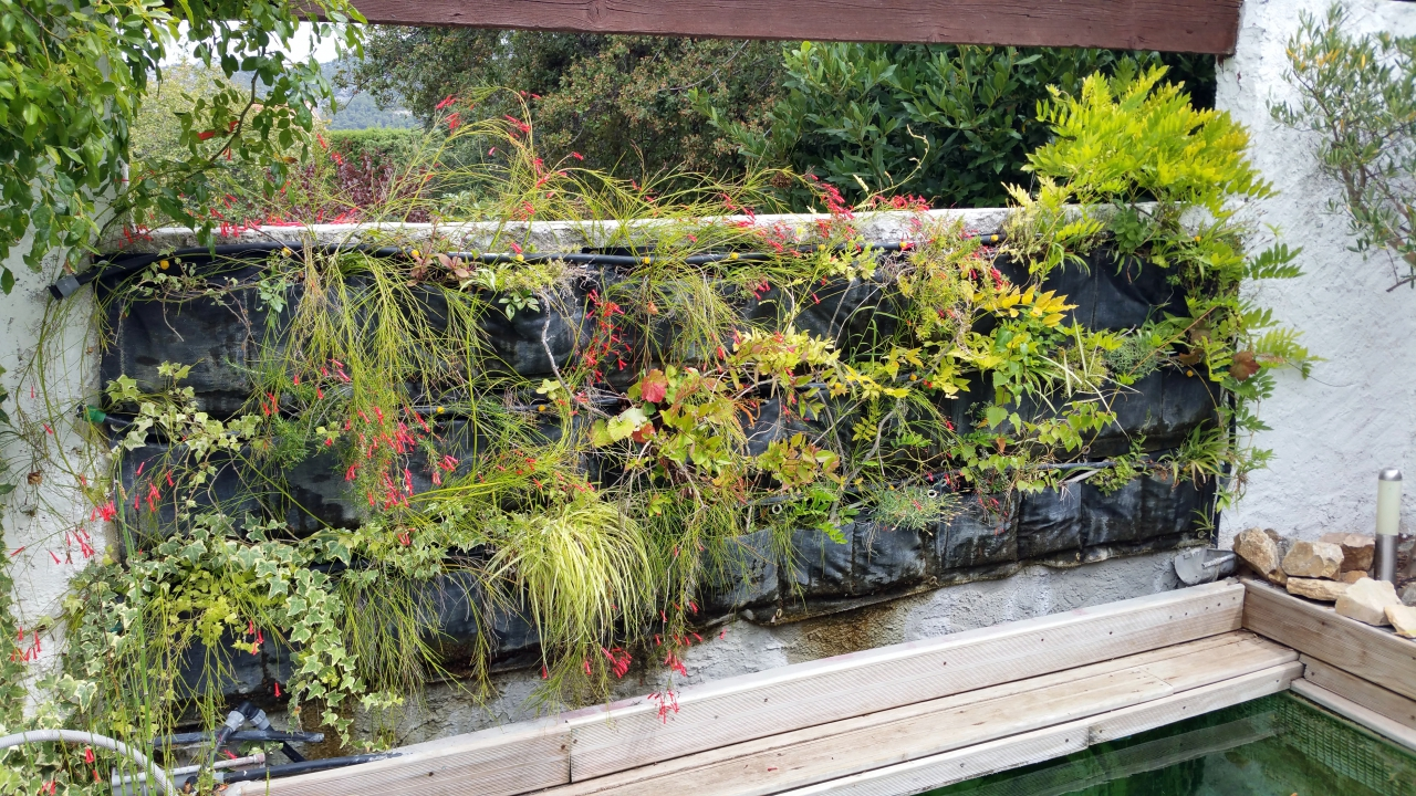 Mur v g tal ext rieur filtrant en photos comment cr er for Creer son mur vegetal