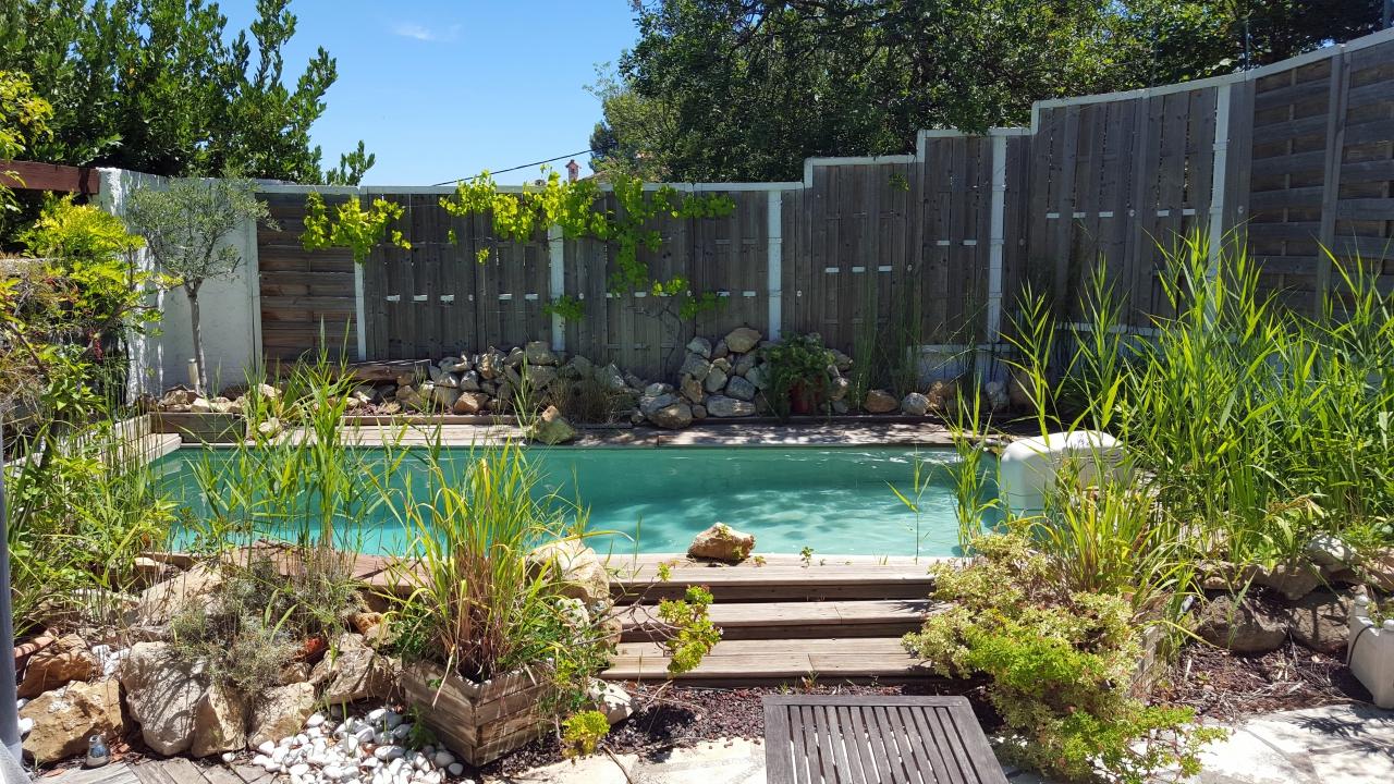 un cadre v g tal cr autour du bassin de nage de la. Black Bedroom Furniture Sets. Home Design Ideas