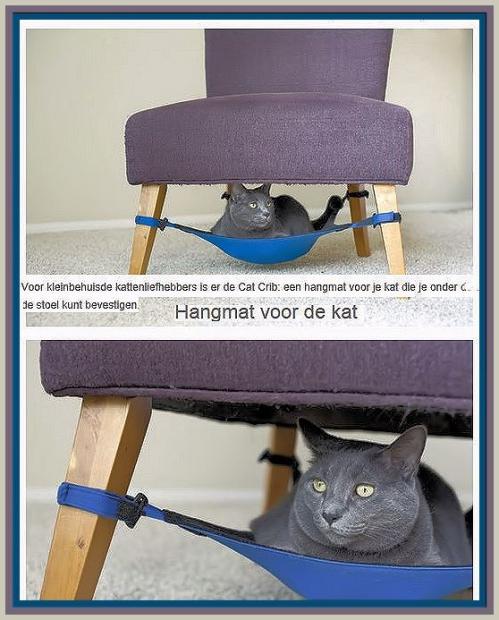 hangmat voor kat.jpg