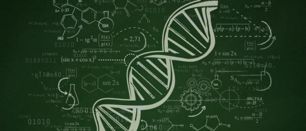 02_genome_51_1.jpg