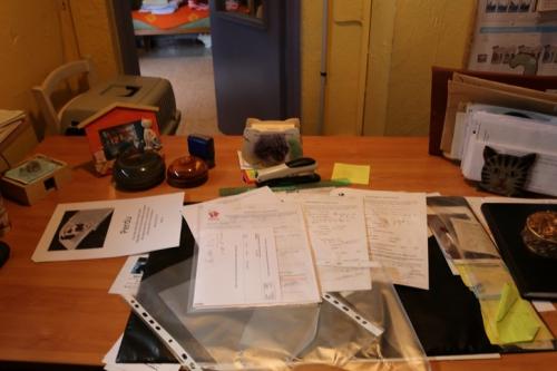 Bureau (4).JPG