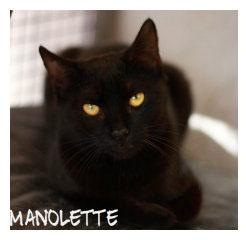 Manolette.jpg