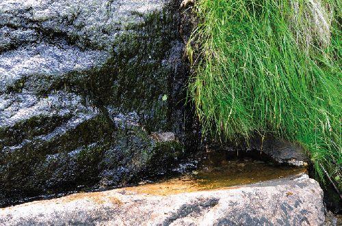 L\'évier et son eau limpide et tiède (Ph. Laurent Crassous)
