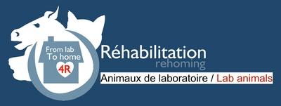 Logo GRAAL Réhabilitation.jpg
