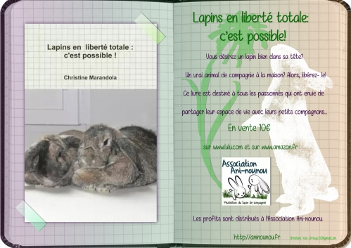 Flyer Lapins en liberté  format A5.jpg