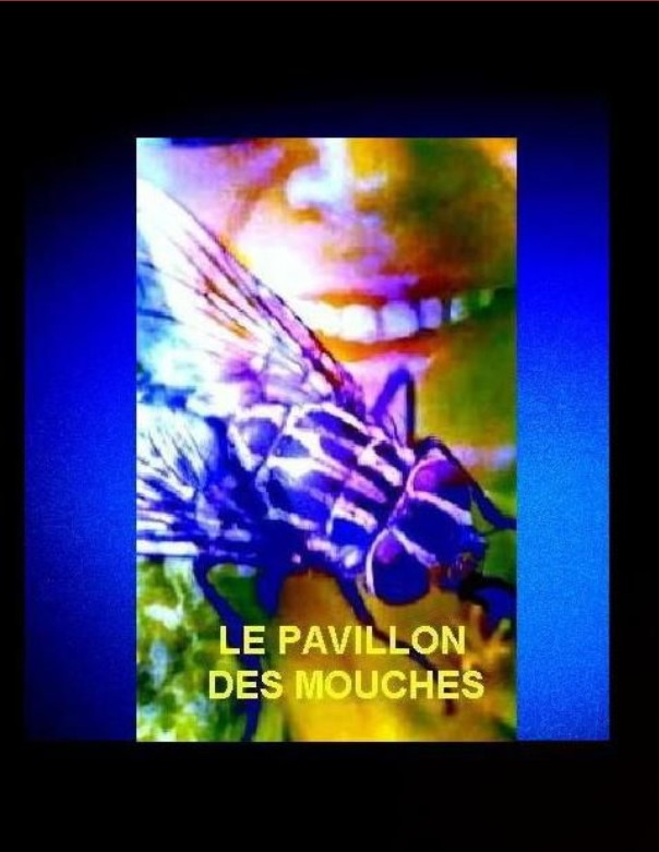 http://static.blog4ever.com/2009/08/338987/le-pavillon-des-mouches-gd-format.jpg