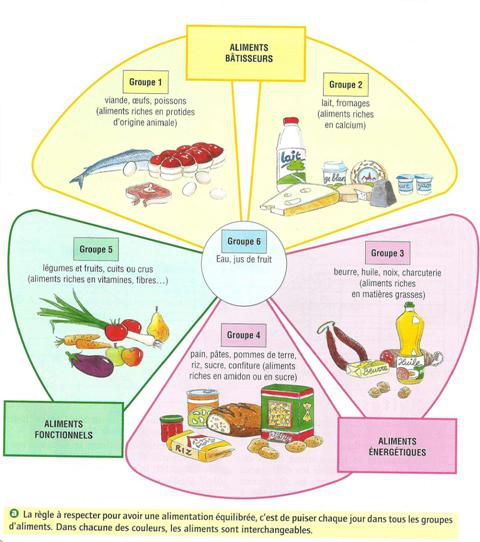 groupes d'aliments.jpg