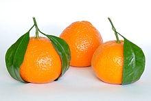 Mandarin_.jpg
