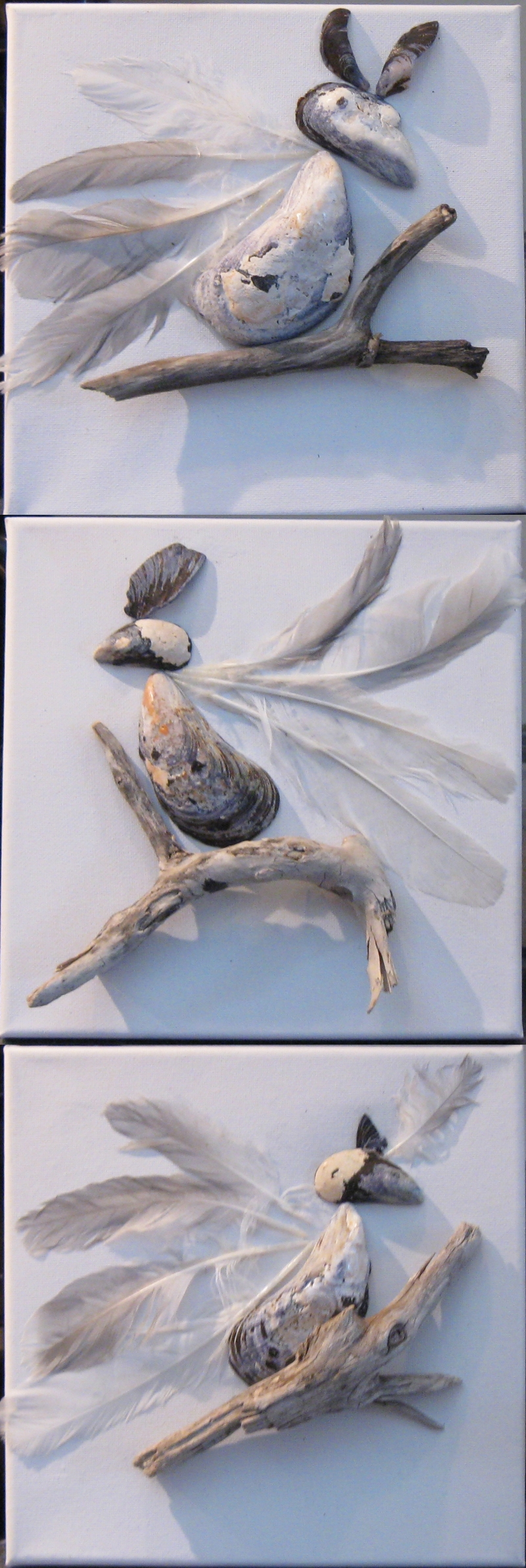 http://static.blog4ever.com/2009/09/353919/Dr--les-d--oiseaux.jpg