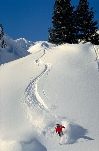 ski-freeride.jpg