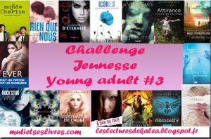 challenge jeunesse young adult 2013.jpg
