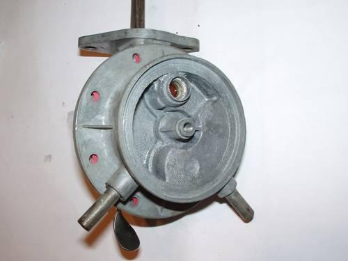 P1010019 (2).JPG
