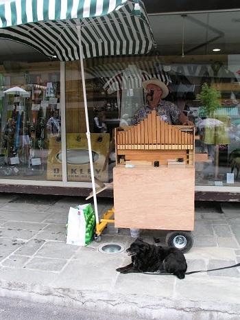 orgue2-1R.jpg