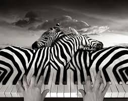 touches piano.jpg