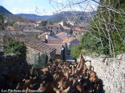 La descente vers le village prise depuis la chèvrerie ... quelques mètres nous sépare des premières maisons du village !