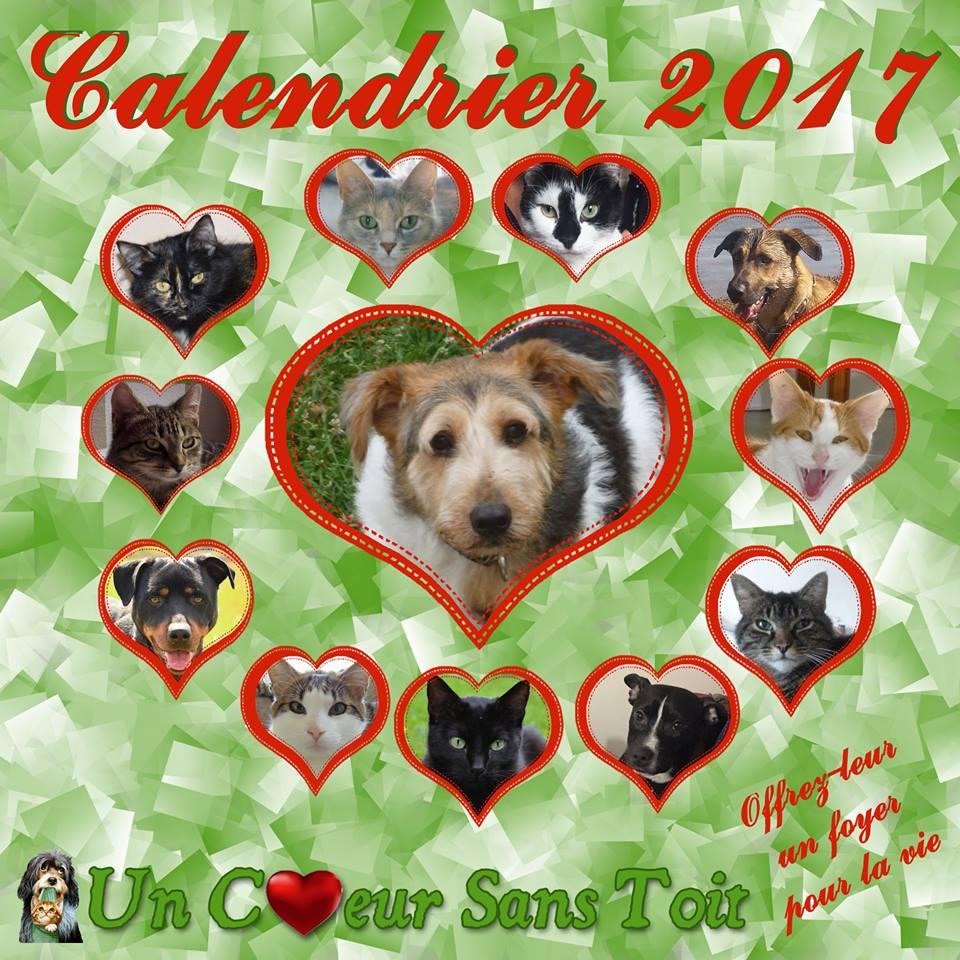 calendrier2017.jpg